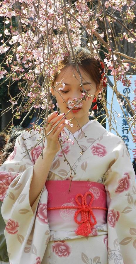 Giappone – Incontrare Madame Butterfly per le strade di Kyoto